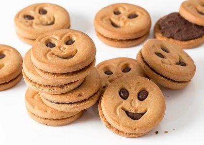 Manfaat Makanan Tambahan Ibu Hamil Berupa Biskuit